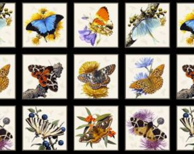 """Butterflies and Moths 24"""" panel by Carl Brenders for Elizabeth Studio 9800E-BLK Panel-White And Black"""