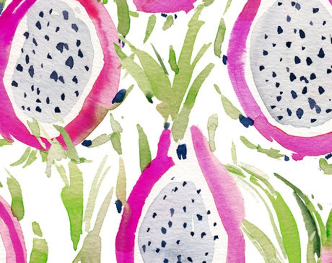 Quilting Treasures QT Fabrics Wild & Fruity Dragon Fruit On White Pink Fabric 27042-Z BTY