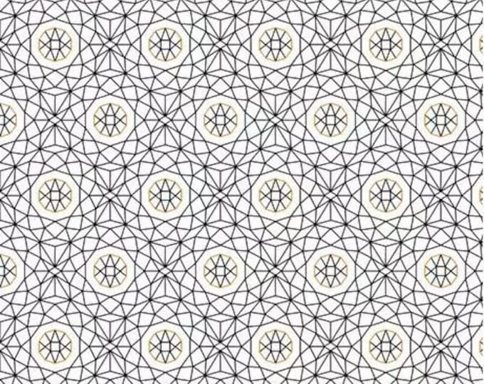 Quilting Treasures Whisper 26767 - z Cotton  Fabric  BTY