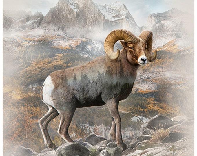 "Hoffman Call of the Wild Digital Q4536 20 Natural BIG HORN SHEEP 34"" Panel"