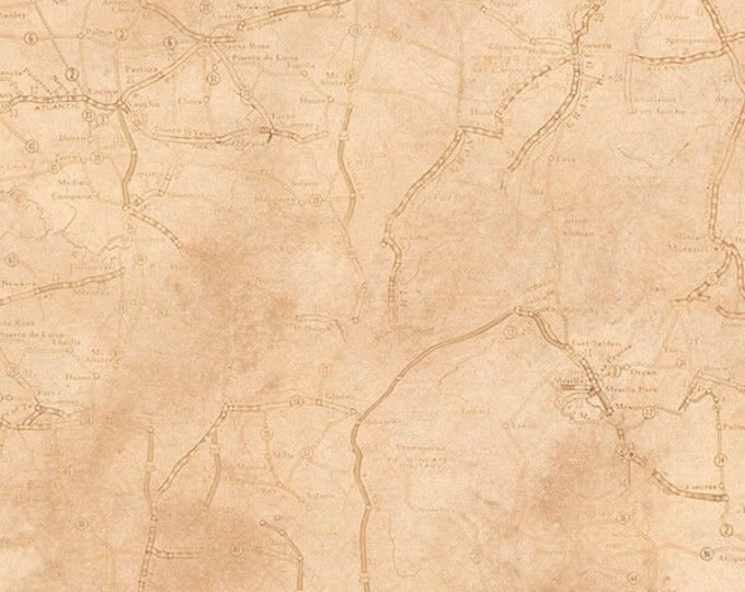 Quilting Treasures Rule the Road Jeff Wack Map Blender Beige Cream Tan Fabric 26690-E BTY