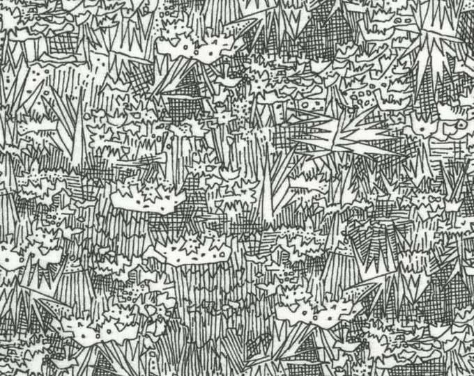 Robert Kaufman Carolyn Friedlander Wide Black White Garden Cotton 108 WIDE Fabric 3 yard cut 17524-2