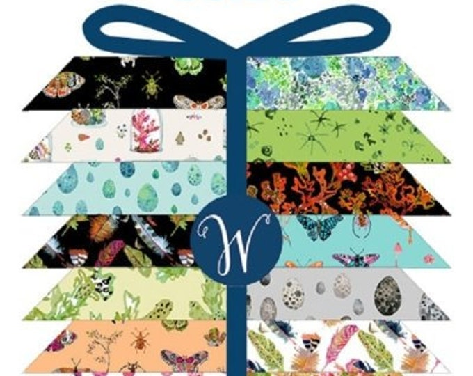 Windham Curio Betsy Olmsted Floral Feather Egg Shell Butterfly Black Green Blue Pink Fabric 21 Fat Quarter Bundle