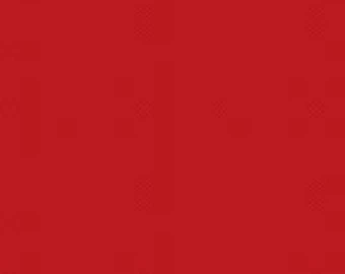 In the Beginning Modern Solids Cotton Fabric 1MSA 10 Red by J Yenter BTY
