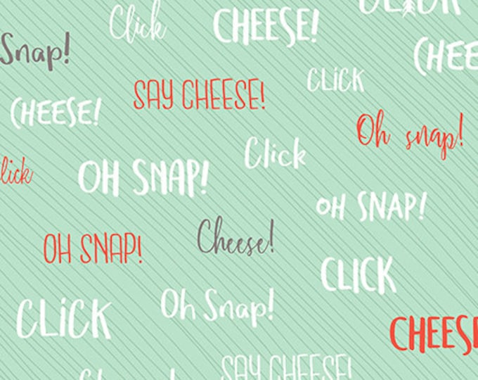 Quilting Treasures Say Cheese 100% Cotton Fabric BTY 26336 Q