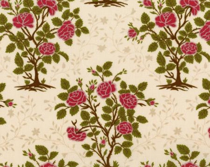 RJR  JGarden Gate - Solid - Parchment Fabric 2802-001 BTY