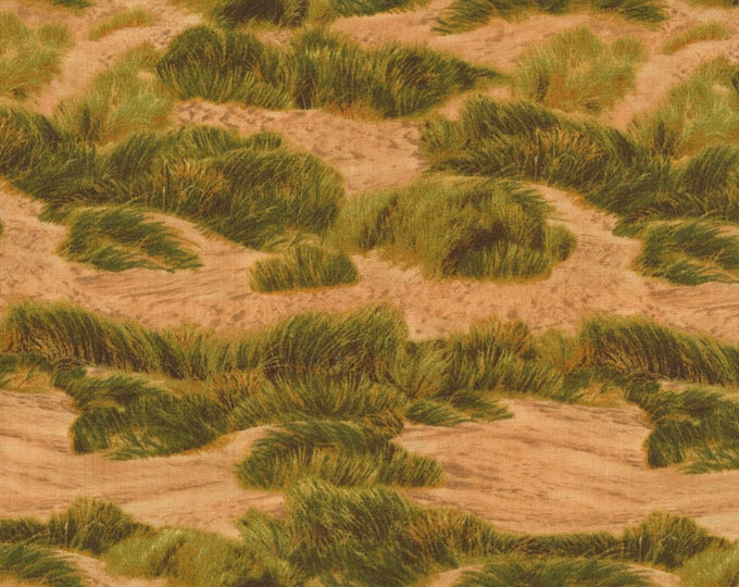 RJR  Danscapes - Sand Dune - Sunset Fabric 2410-002 BTY