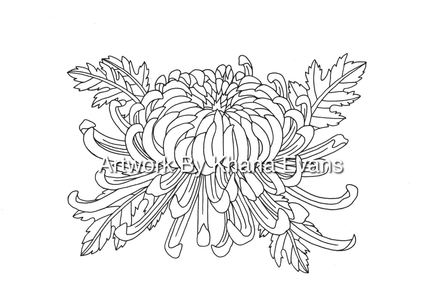 Chrysanthemum Flower Tattoo Design PDF A4 Printout Colouring | Etsy