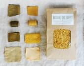Natural Dye, Osage Orange Wood Chips, Natural Dye Supply, Botanical Dye, Recipe Included, Osage Orange, DIY Dye Kit