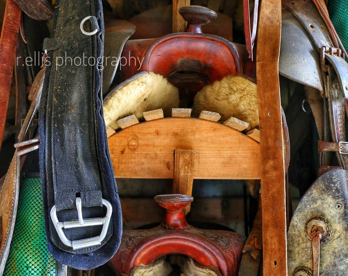 Photography, Horse Saddles At The Ready, Adams County Ohio, 11 x 14 Inch Photographic Print