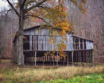 Old Tobacco Barn, Photographic Prints, 11 X 14, Cumberland County, Kentucky