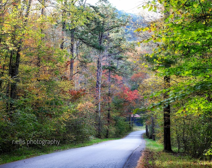 Photography, Kentucky Backroads Photography, Rowan County, 11 x 14 Inch Photographic Print