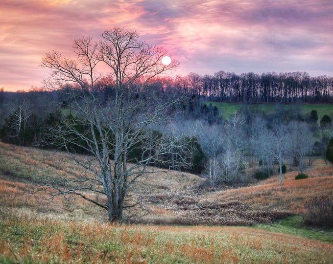 Photography, Landscape Print, Title: Colorful Sunset Over A Field in Sparksville, 11 x 14 Inch Photographic Print