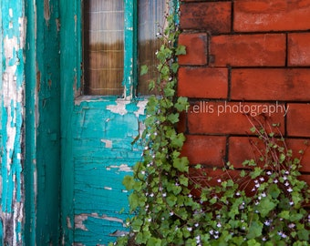 Photography, Primitive, Architectural Print, Title: A Door In Maysville, 11 x 14 Inch Photographic Print