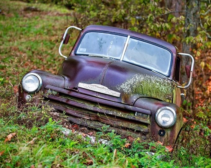 Photography, Old Chevy Truck, Title: Slowly Growing Out of Sight, 11 x 14 Inch Photographic Print