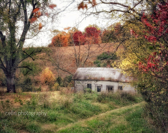 Photography, Old Homestead  Along At A Kentucky Back Road, 11 x 14 Inch Photographic Print