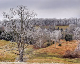 Photography, Landscape, Sunrise, Nature Print, Title:  Heavy Frost Across The Fields Of Sparksville, 11 x 14 Inch Photographic Print