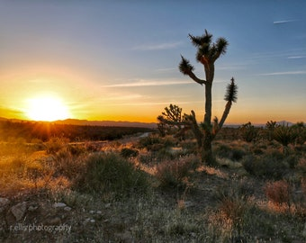 Photography, Wall Decor, Landscape Sunset Print, Title: Colorful Sunset Over The Desert, 11 x 14 Inch Photographic Print