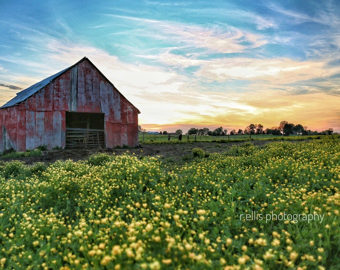 Photography, Landscape, Country Scene, Title:  Sunsetting On A Kentucky Farm, 11 x 14 Inch Photographic Print