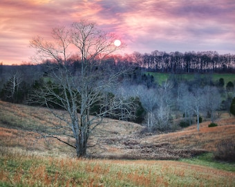 Photography, Landscape Print, Title: Colorful Sunset Over A Field in Sparksville