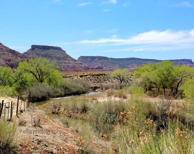 Photography, Wall Decor:  Desert, Somewhere In Utah, 11x14 Inch Photographic Print