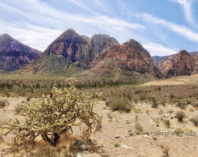 Photography, Wall Decor:  Red Rock Canyon, Nevada, 11x14 Inch Photographic Print