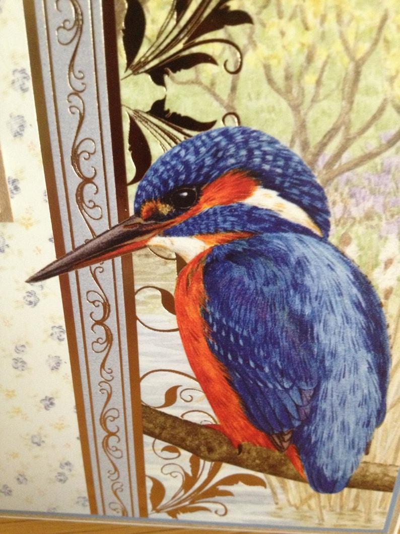 mens or ladies kingfisher bird themed birthday card  etsy