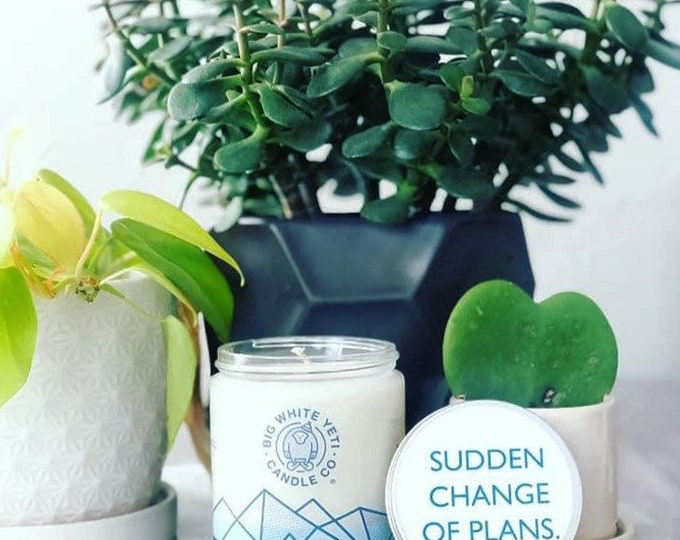 Sudden Change of Plans Soy Candle - 8oz frosted glass jar