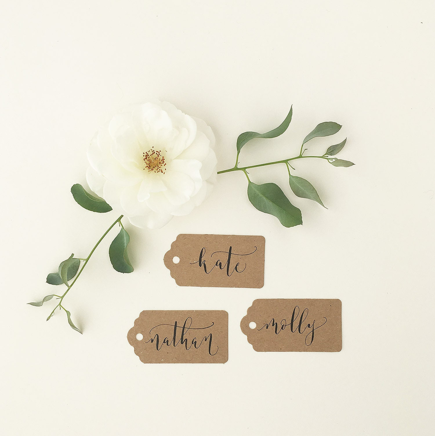 affordable rustic luggage tags with calligraphy wedding place