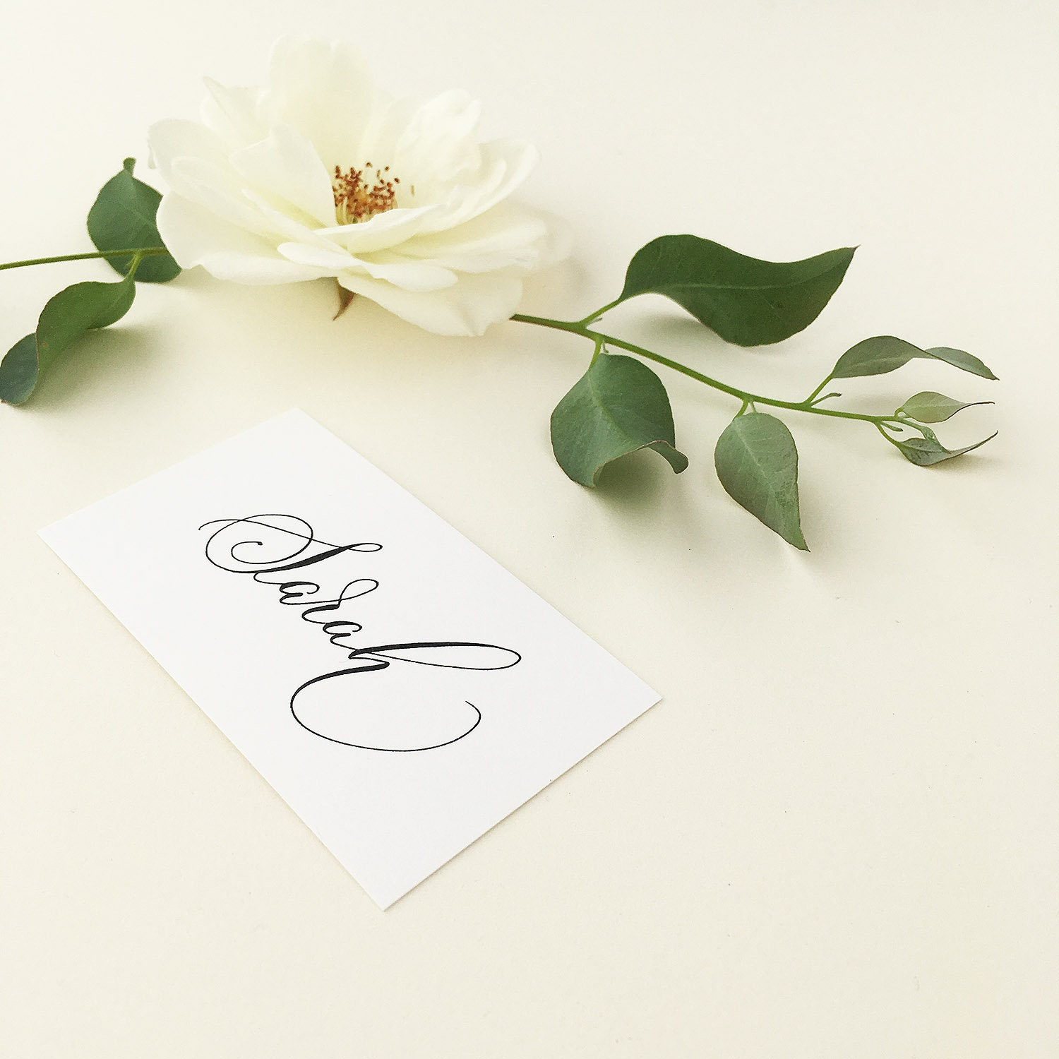 Flat White Wedding Place Names With Flourished Modern Calligraphy In