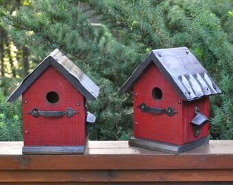 Diy Living Roof Birdhouse Succulent Green