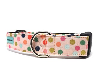 Celebration Pop | Colourful Polka Dot Dog Collar | Available in 4 widths