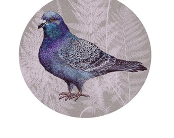 Friendly pigeon