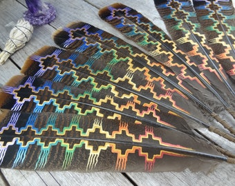 CHAKRA FEATHER:. Rainbow Feather//Energy Centers//Spiritual Feather//Smudging//Healing//Sacred Space//Altar//Painted Feather/Lightwork