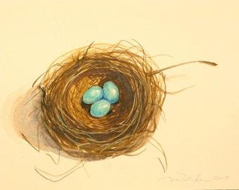 tiny bird nest original watercolor painting 3 egg nest robins egg blue nest watercolors
