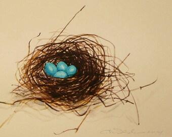 Nest of Robins Eggs print fine art print nest with four blue eggs watercolor print