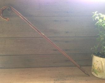 vintage wooden walking cane / bern bärengraben souvenir / carved cane