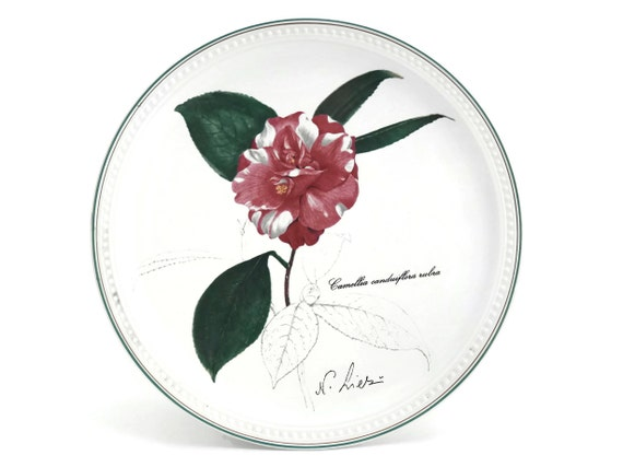 Villeroy and Boch Flower Wall Plate. 1979 Birthday Plate. Camellia Canduiflora Rubra. Botanical Plate. Botanic Garden Decor.