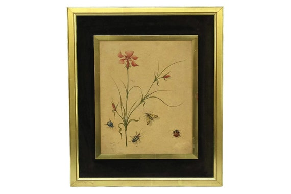 Insect and Flower Vintage Watercolor Painting by Erwin Tschudi, Original Framed Signed Wall Art, Bug Illustration, Nature Lover Gift