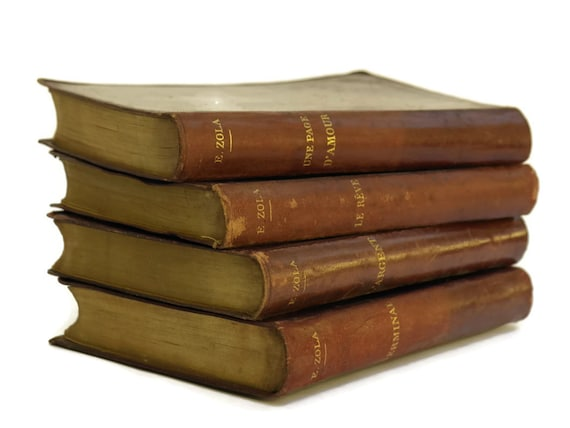 Emile Zola Leather Bound Book Set, Antique French Book Collection