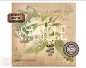 """Wild Berries Soap Gift Wrap Printable Sheet ~ Vintage Aged Paper Wrapping Paper JPG Download ~ 8"""" Square Bar Packaging ~ Vintage Floral"""