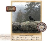 12 Hidden Objects Game Escape Room Printable Sheet ~ 2 JPG Files ~ Aged Paper ~ Raven Stone Wall Mountain Mouse, Rat, Bat, Cat, Bear, Coyote