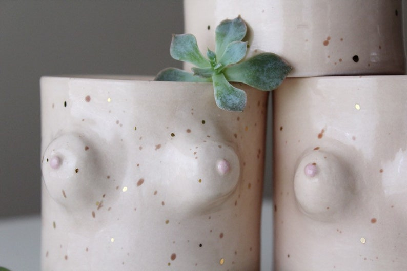 Boob Planter Vase  Gold Freckled  Indoor Planter  Flower image 0