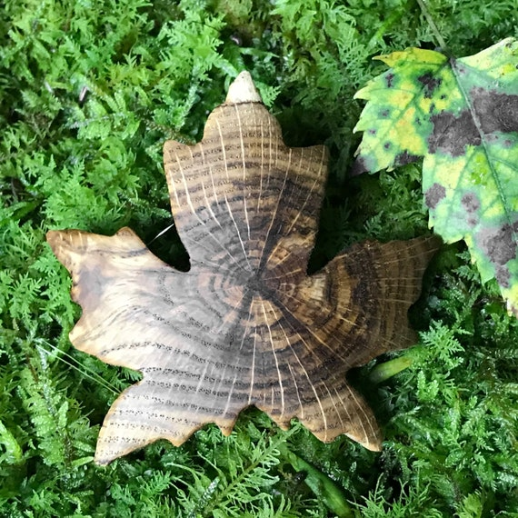 Maple Leaf Hair Clip, 50mm French Clasp