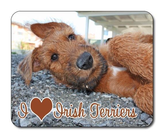 Irish Terrier Dog Choice of size /& colours! I Love Irish Terriers T shirt