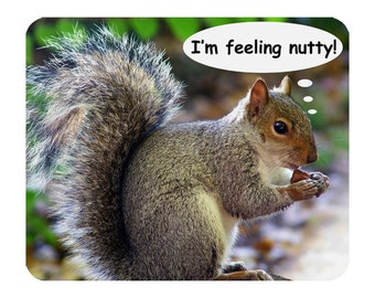 Grey Squirrel - I'm Feeling Nutty! Mouse Mat Mouse Pad