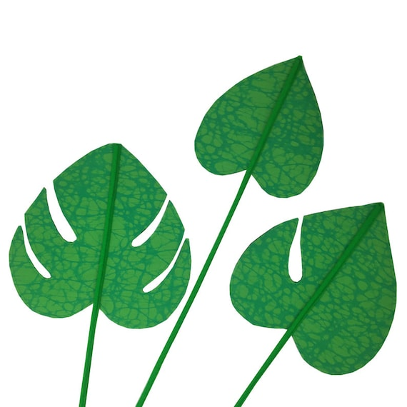 SCENERY LABEL Dutch Wax Monstera Leaves
