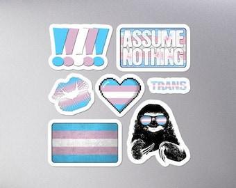 Transgender Pride Flag Sticker Set