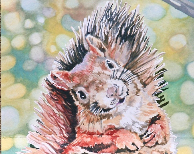 3D PopUp Card of a Squirrel and Acorn Suitable for Birthday Card, Just Say Hi Card, Retirement Card, or Get Well Soon Card