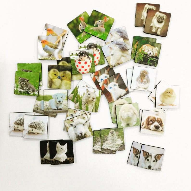 Animal Matching Games  Match-a-Cat  Match-a-Dog  40 Cute Animal Tiles